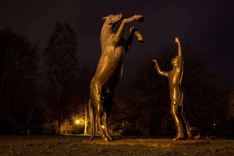 Pferd im Schloßpark
